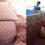 ஆதிச்சநல்லூரில் வாழ்விடங்களை  தேடும் ஆய்வாளர்கள் மூடிய நிலையில் மிகப்பெரிய முதுமக்கள் தாழிகள் கிடைத்தது.
