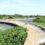 தாமிரபரணி ஆற்றில் மிகவும் பழமையான  நீளமான மருதூர் அணை தூர் வாரப்படுமா?