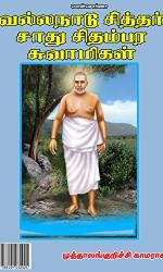 வல்லநாடு சித்தர்: சாது சிதம்பர சுவாமிகள்